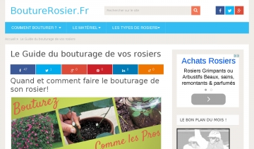 Un site qui traite de la bouture de rosier