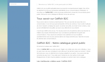 Cellfish-b2c, votre société de production de divertissement digital